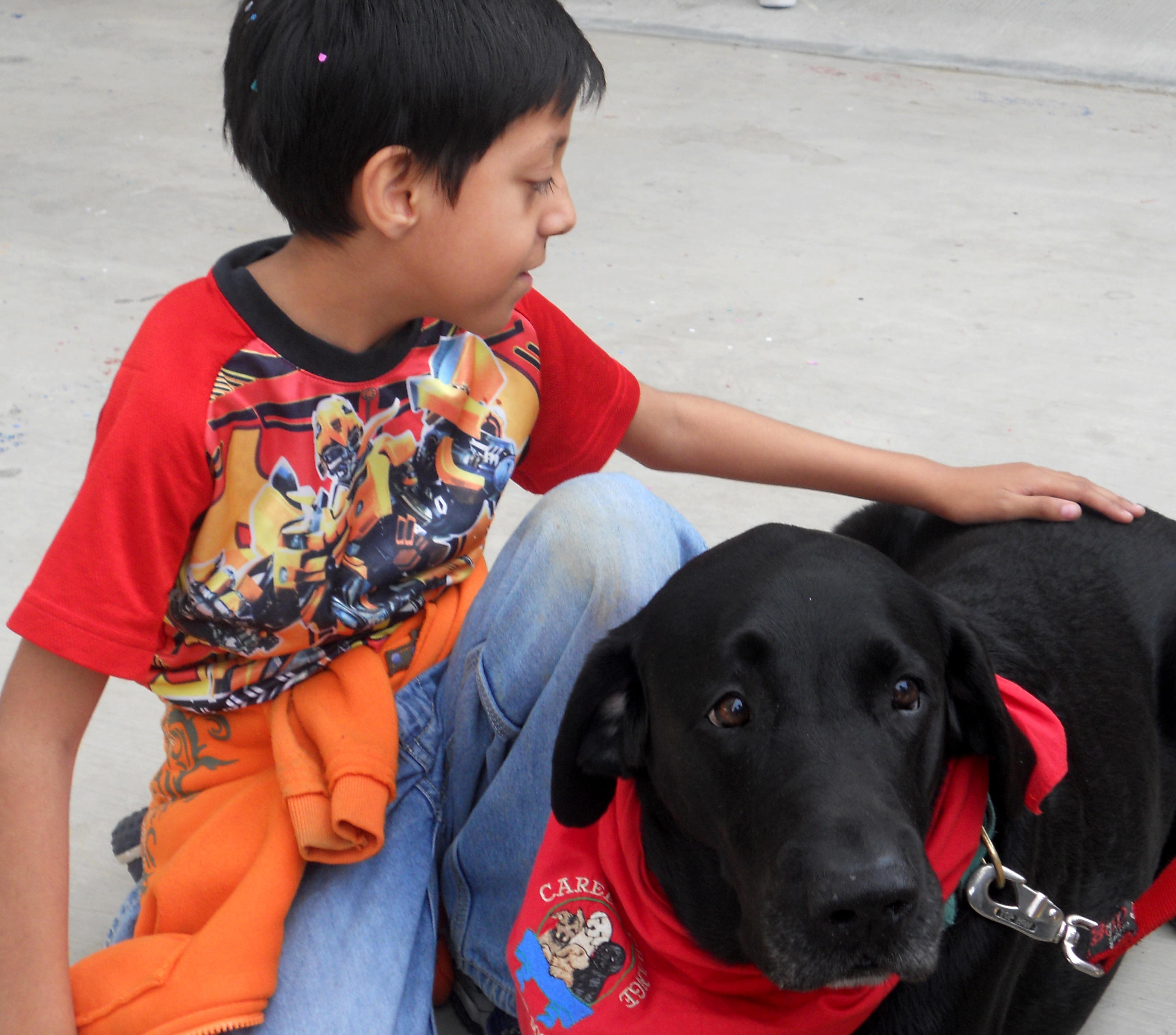 Service dog with Special Ed children